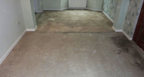 Image Result For Gluing Engineered Hardwood Floors To Concrete
