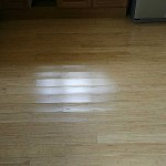 Problems with Hardwood Flooring: Moisture Damage